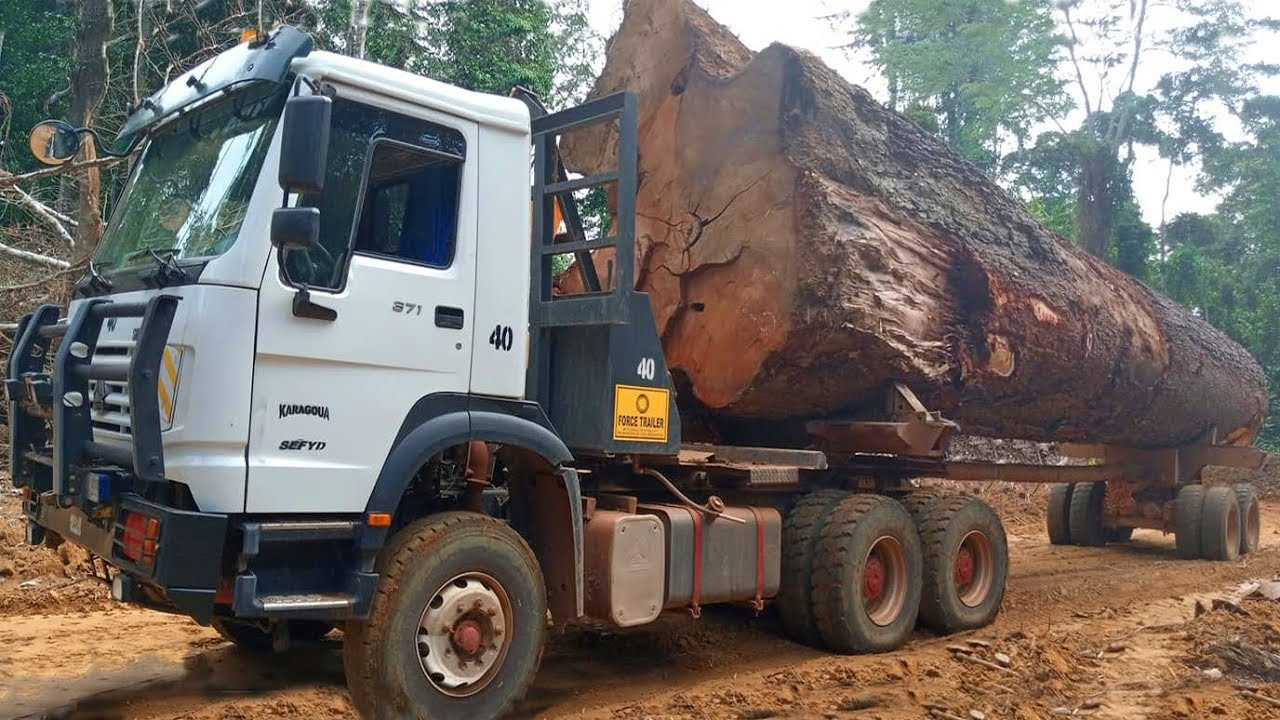 Extremely Dangerous Logging Trucks and Skidders in the Forest Extreme Muddy Road