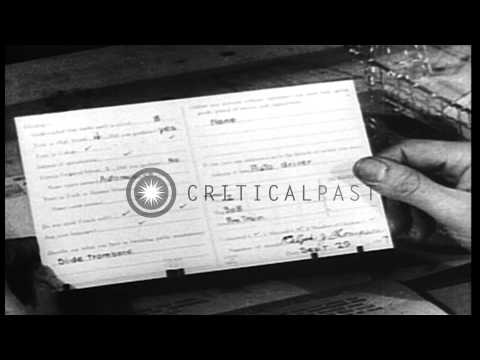 An Army personnel officer looks at the qualification record of a soldier during W...HD Stock Footage
