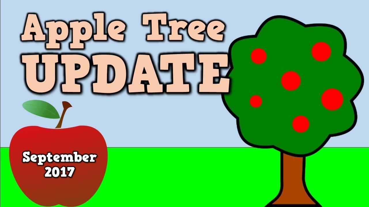 Apple Tree Update- 9.20.17- Harry Kindergarten checks on his apple ...
