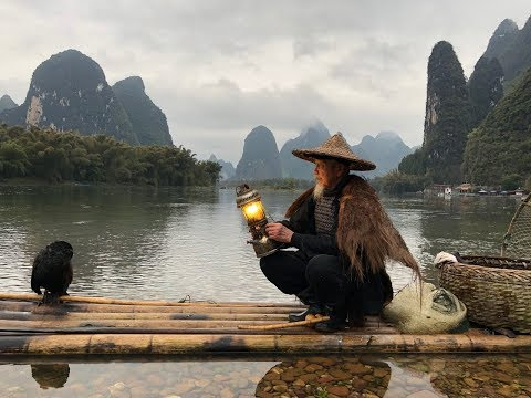Li River Cormorant Fishing