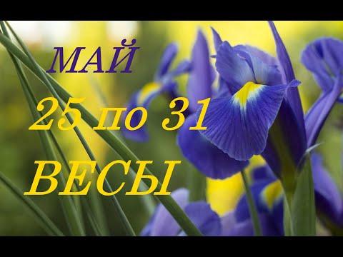 ВЕСЫ. ТАРО-ПРОГНОЗ на НЕДЕЛЮ с 25 по 31 МАЯ 2020 г.