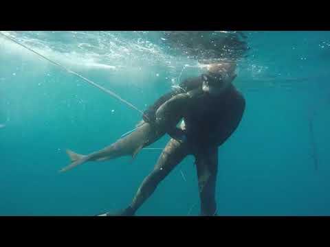 Spearfishing Guinea 2017 Conakry Fishing Club
