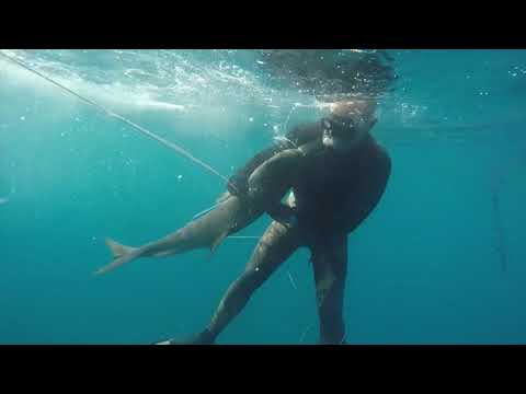 Spearfishing Guinea 2017 Conakry Fishing Club