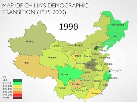 Chinese Demography and Hukou System Presentation Sample