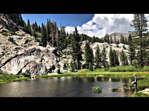 Fishing California Mountain Lakes For Native Trout!