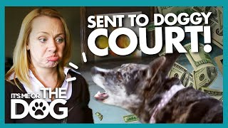 Owner Sent to Court Over Noisy Nuisance Dog! |  It's Me or The Dog