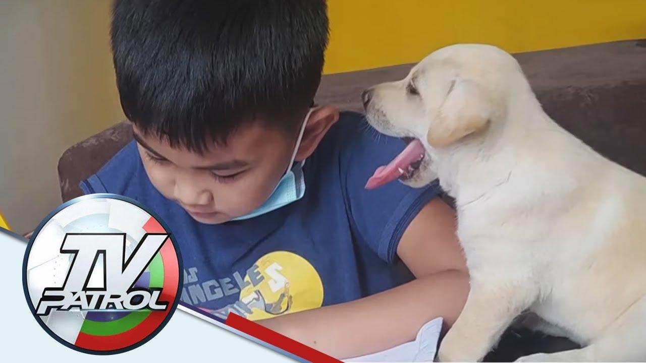 Pagbabantay ng aso sa 8-year old na batang nagsasagot ng module, patok sa social media | TV Patrol