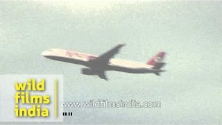 Jet Airways, GoAir, Kingfisher Airlines and Air India flight approaching IGl Airport