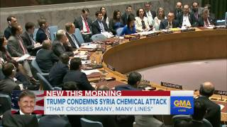 Trump says Syria chemical attack 'crossed many, many lines'