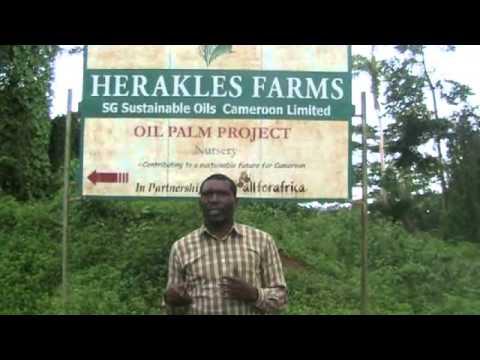A Qui Profite L'Investissement D'Herakles Farms