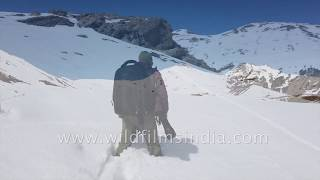 wildfilmsindia cameraman slogs through the snow to bring you Snow Leopard footage