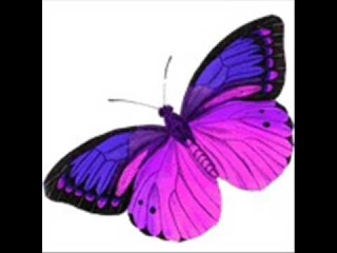 DDR-butterfly lyrics