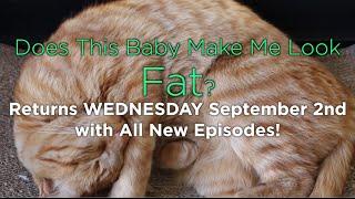 Season 3 Starts Next Week!   DOES THIS BABY MAKE ME LOOK FAT?