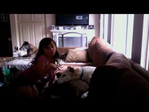 jlpbaseball45 s webcam video october 11 2010 01 04 pm