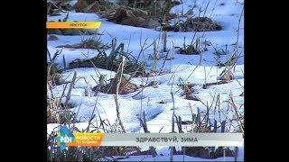 Переменчивую погоду обещают синоптики в ноябре в Иркутской области