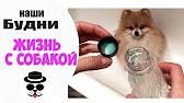 Whois-сервис. Закрыть страницу. 2013 © гк homenet · контактная информация.