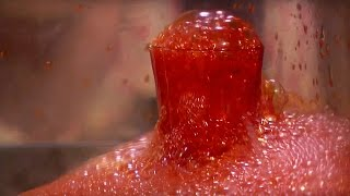 Blood Boiling! Death In Space | Dara O' Briain's Science Club | Earth Lab