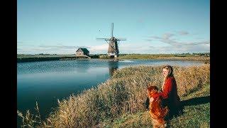 Die Nordseeinsel Texel | VISUAL VIBES | Niederlande | Lilies Diary