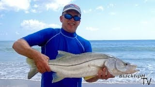 Monster Snook from the Beach