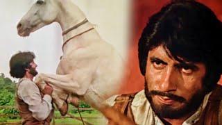 देखिये कैसे अमिताभ बच्चन ने किया घोड़े को काबू | सत्ते पे सत्ता मूवी का ज़बरदस्त सीन