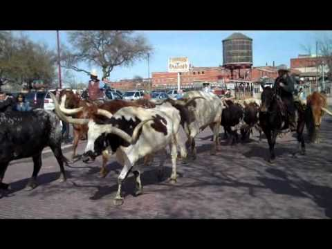 Texas Family Travel - Fort Worth