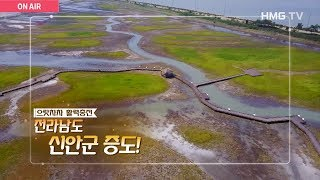 [HMG TV]유네스코 생물권 보전지역! 소금 꽃 피는 전라남도 신안군 증도!