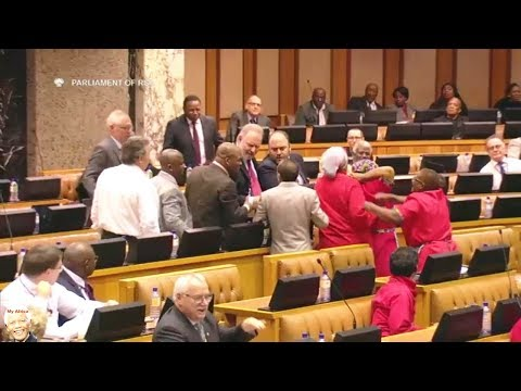 Fight Between DA + EFF And Shaik Imam? Drama In Parliament