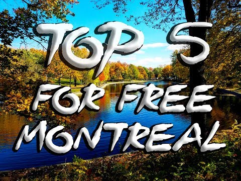 TOP 5 Montreal FREE Things to Do