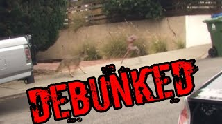 Alien chased by coyote! Wtf DEBUNKED