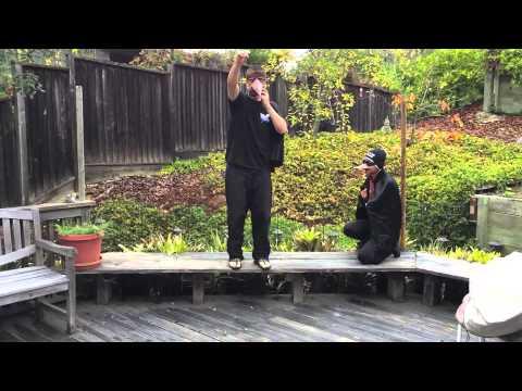 EEB 100 UCLA Crow Kleptoparasitism