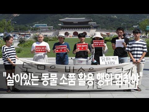 """tvN 식량일기 제작진, 소품처럼 활용한 닭 잡아먹히게 방관"" / 연합뉴스 (Yonhapnews)"