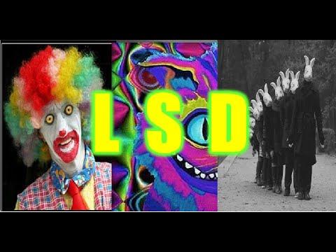 LSD, ÁCIDOS, TRIP: