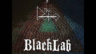 Скачать BlackLab The Dope Dark Roaring Noise Assault Split EP 2017