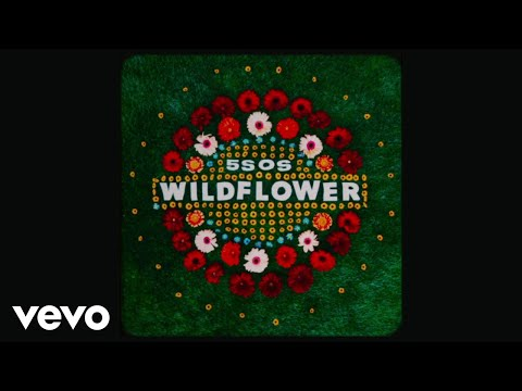5 Seconds of Summer - Wildflower (Lyric Video)