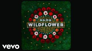 5 Seconds Of Summer - Wildflower Lyric Video