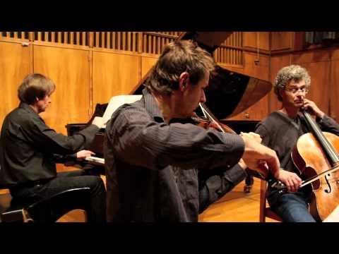 Behind The Scenes -- Thomas Demenga, Richard Tognetti, James Alexander