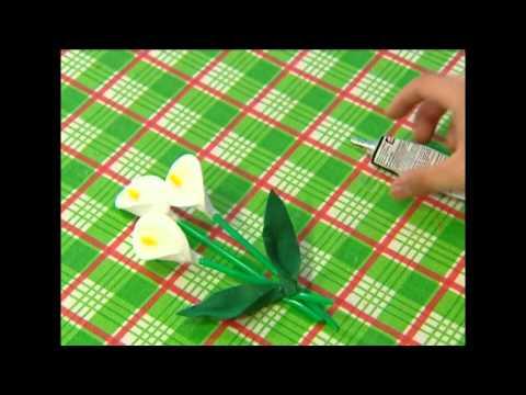 Белокрыльник - Лучшие прудовые растения