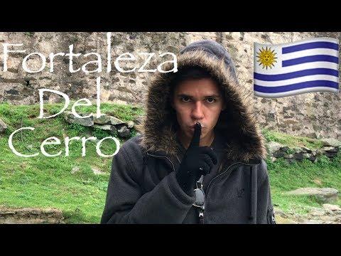 MONTEVIDEO, Uruguay: Fortaleza Del Cerro | Wild Dog | Best Food