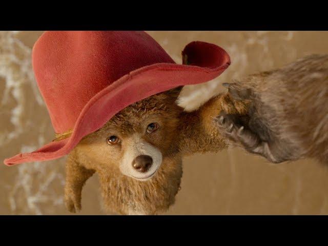 Movies Paddington 2 2017 Hugh Bonneville Sally Hawkins Brendan Gleeson Watchward