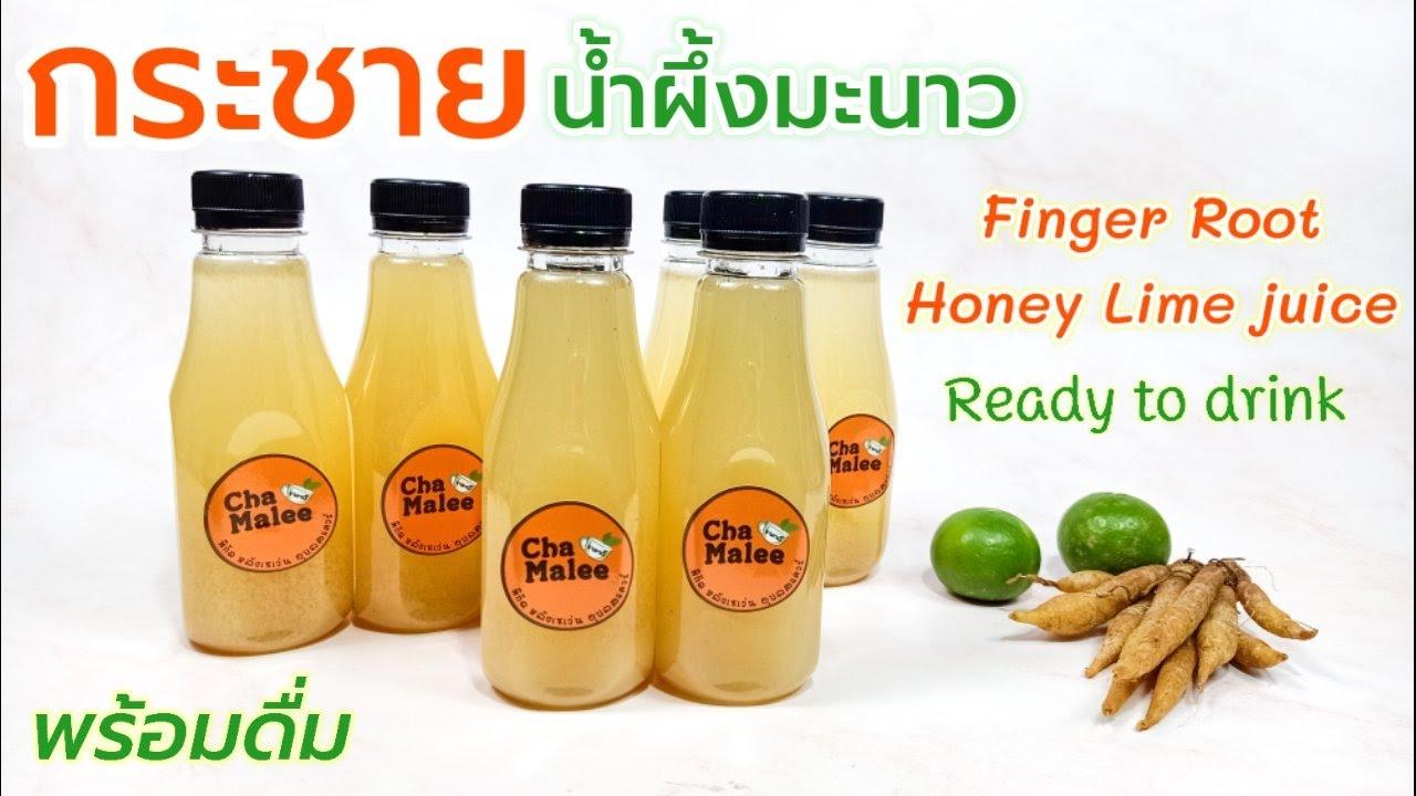 กระชายน้ำผึ้งมะนาวพร้อมดื่ม Finger Root Honey Lime Ready to drink