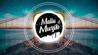 Stereo Hearts x Zaalima (Hindi x English Mashup) | DJ Sid | Mallu Muzik Official