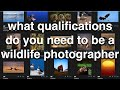 What Qualifications Do You Need to be a Wildlife Photographer