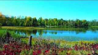 HENRY MANCINI - SUMMER OF