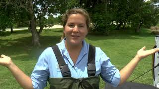 The Eco Show: Water Quality Monitoring