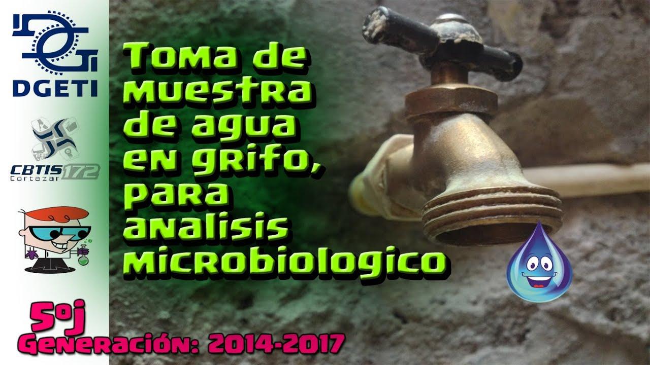 Toma de muestra de agua en grifo an lisis microbiologico for Toma de agua