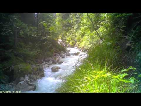 Gebirgsbach im Zauberwald - The mountain torrent in the Enchanted Forest- Dreams of Nature 20