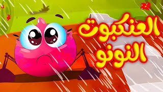 العنكبوت النونو - طيور بيبي Toyor Baby