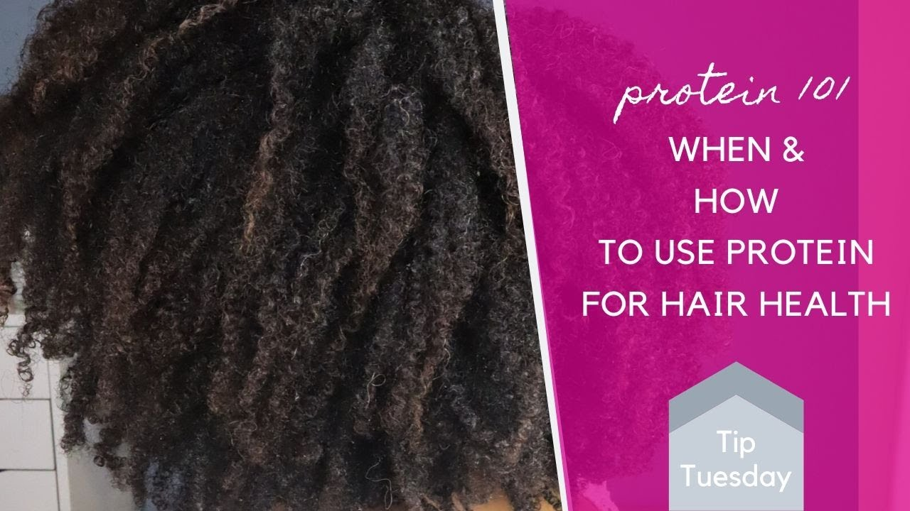Protein 101: How To Use Protein for Healthy Natural Hair | Tip Tuesday