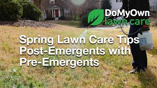Should I Use Post-Emergents with Pre-Emergents in the Spring? | DoMyOwn.com