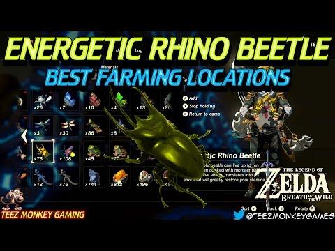 how to get energenic rhino beetle botw